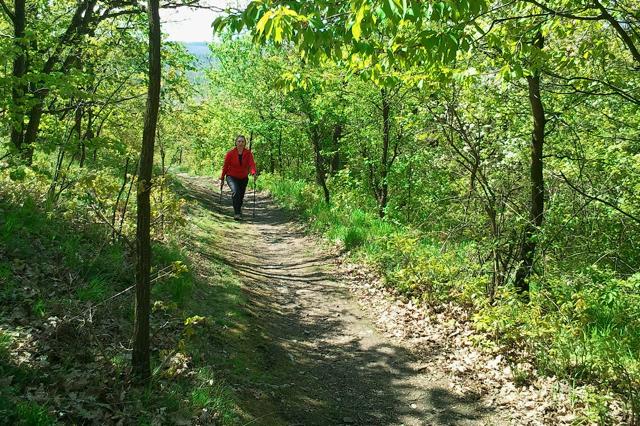 Malokarpatské chodníčky sú ideálne pre nordic walking